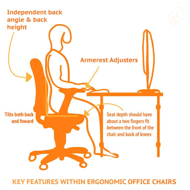 Key Features Within Ergonomic Office Chairs