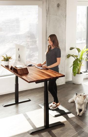 Ergonofis Standing Desks